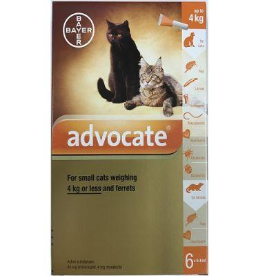 爱沃克猫体外驱虫滴剂 小于4公斤体重适用 6支装 Advocate For Small Cats under 4kg (8.8lbs), 6 Pack