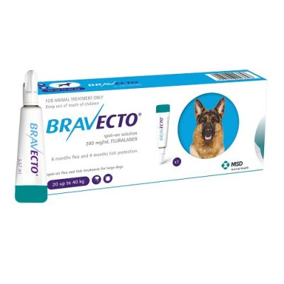 Bravecto Spot-On 1000mg for Large Dogs >2040 kg (44-88 lbs)