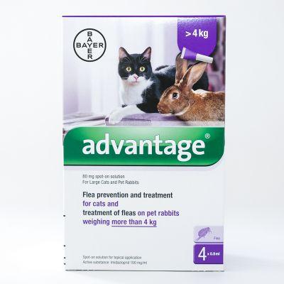 拜耳 蚤安猫用体外驱虫滴剂适用体重4公斤以上 4支装 Advantage (Purple) for Large Cats over 8.8lbs (4kg)