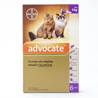 爱沃克猫体外驱虫滴剂 4-8kg体重适用 6支装 Advocate Large Cat 4-8kg (9-18lbs), 6 Pack