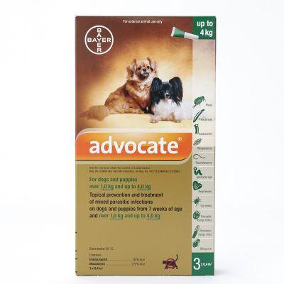 爱沃克犬用体外驱虫滴剂 适用体重4-10公斤犬用 3支装 Advocate for dogs and puppies below 4kg (8.8 lbs), 3 Pack